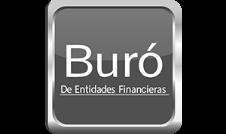 Buró de Instituciones Financieras